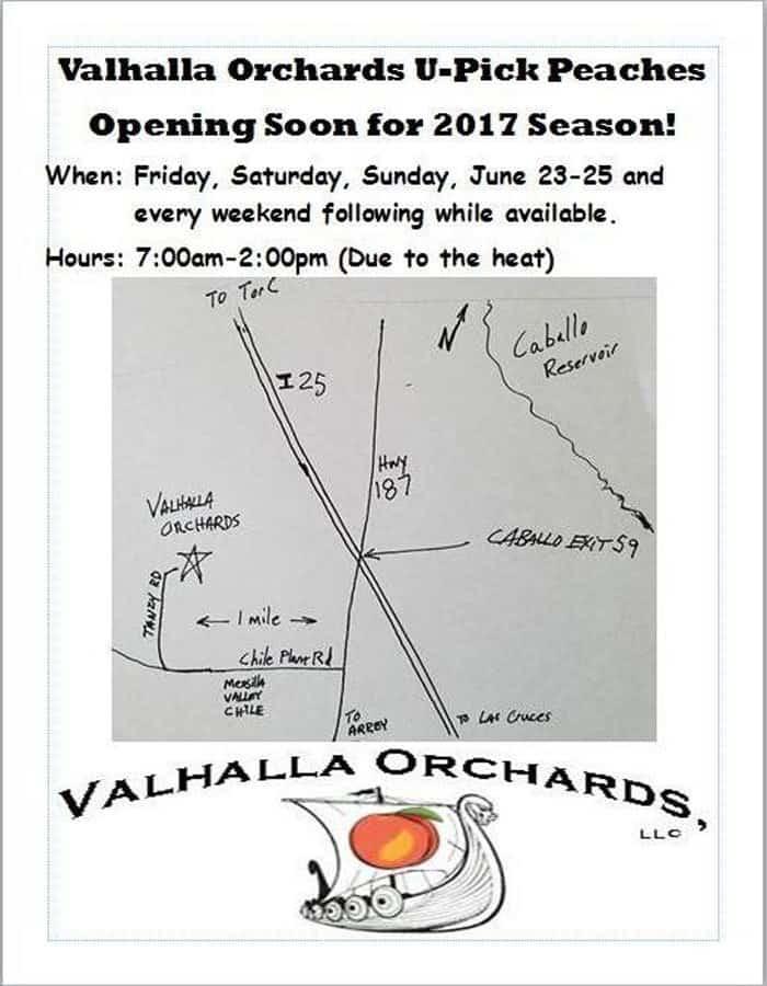 2017 Season Opening U-Pick Peaches