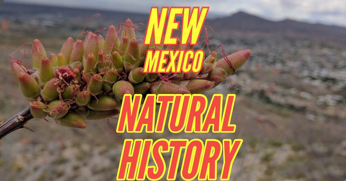 Sierra County Natural History Workshop