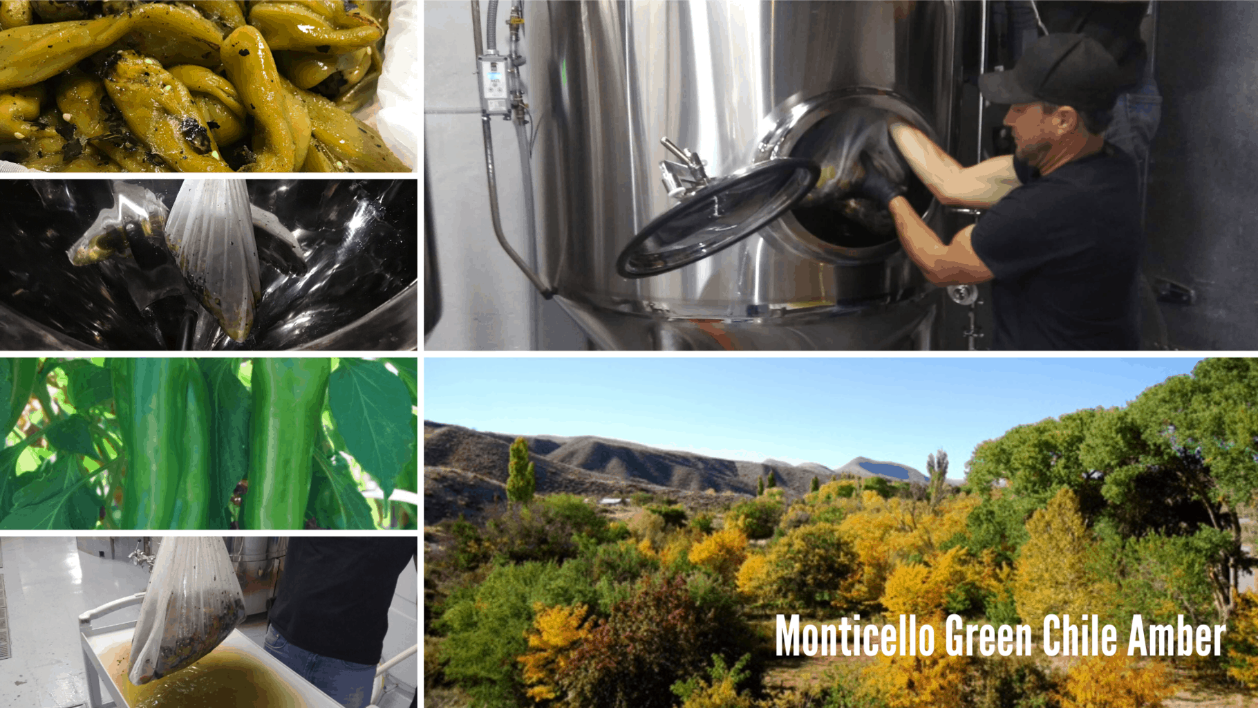 Monticello Green Chile Amber - Beer Release