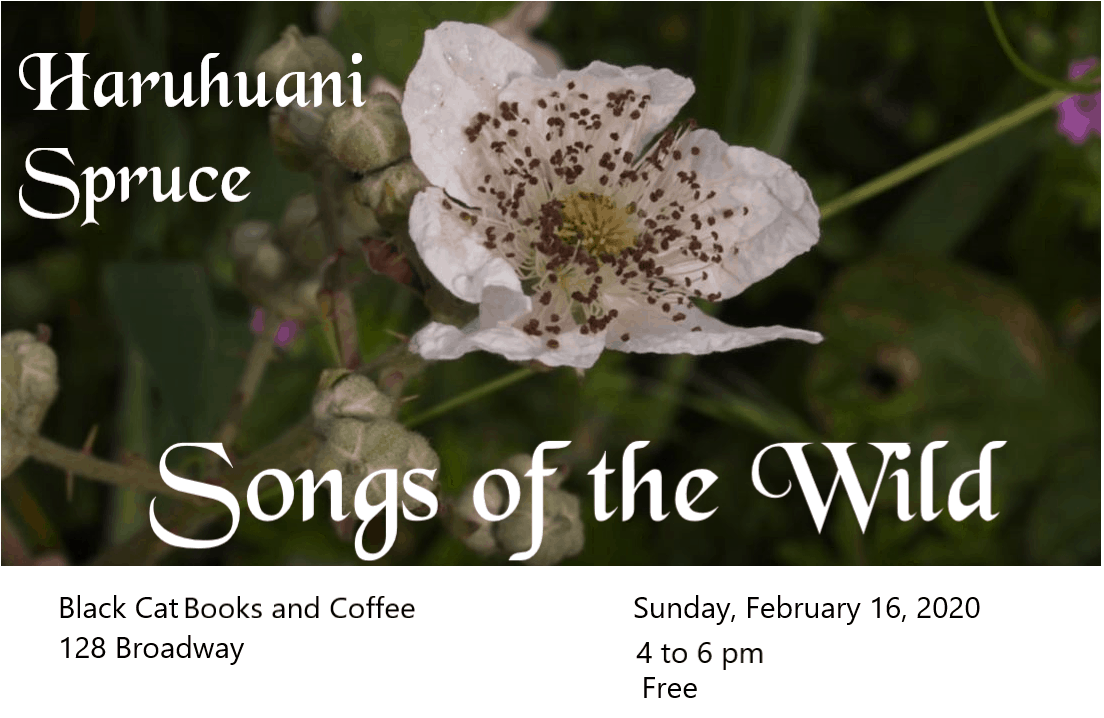 Songs of the Wild: Haruhuani Spruce's Music